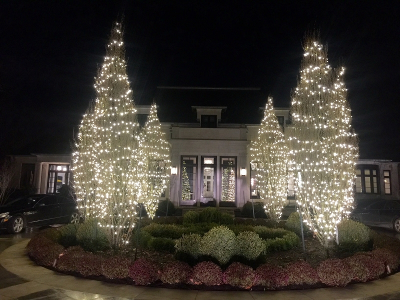 Spiral wrapped warm white lights on trees for Christmas entertaining front entrance