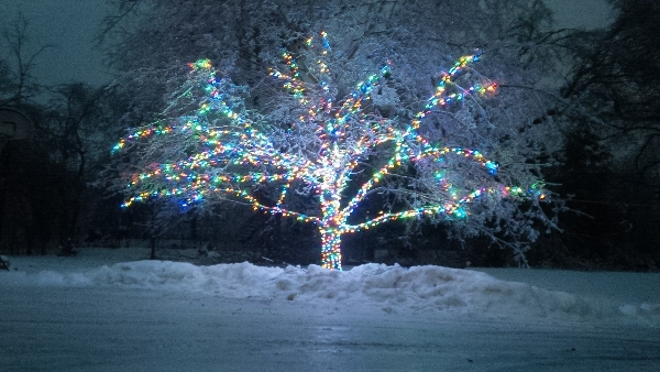 richmond-hill-christmas-multi-colour-tree-led-mini-lights-by-lawnsavers