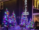 Locale Restaurant King City Christmas trees accenting your business by LawnSavers