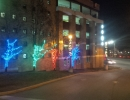 Red green and blue LED light trees St. Joes Toronto by LawnSavers
