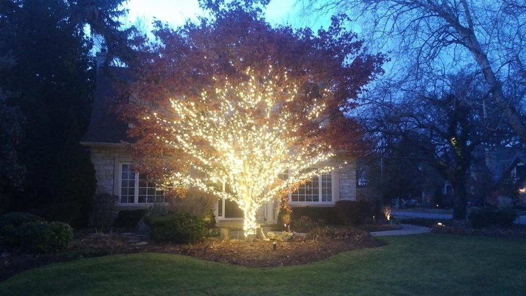 christmas lights installation aurora