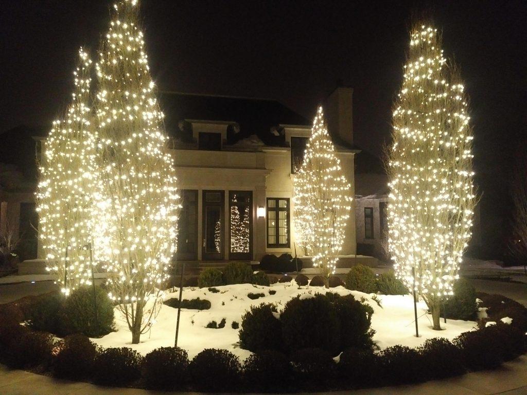 christmas lights installation etobicoke